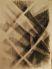 Drótfonatok , szén, rajzpapír , 65×70cm